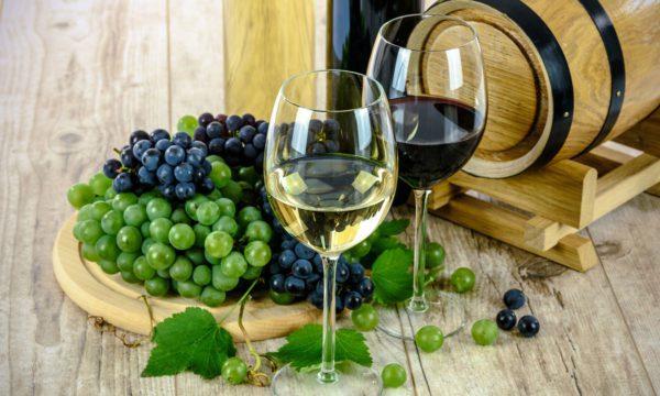 Temakveld om Sør-Afrikas vinområder ny